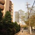 Photos: 華山路と高層マンションッ