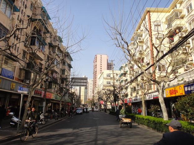 晴れた上海