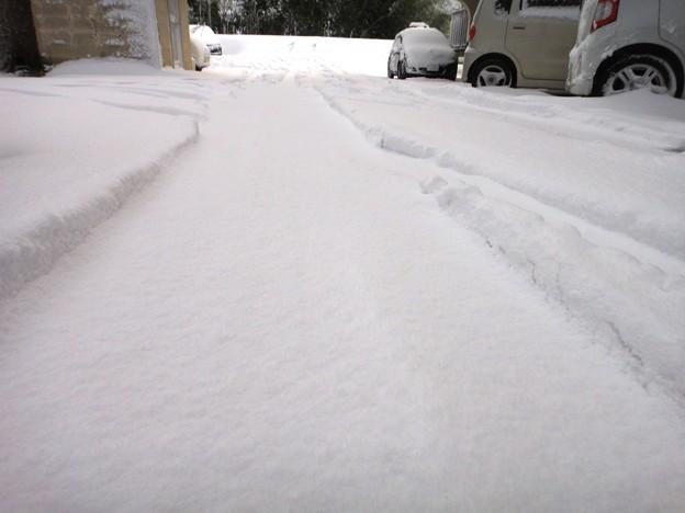 雪とワダチ