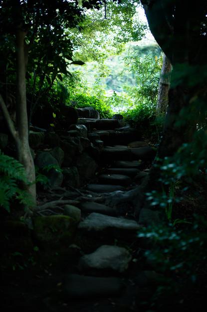 鎌倉フォトウォーク2012 - 秘密の抜け道