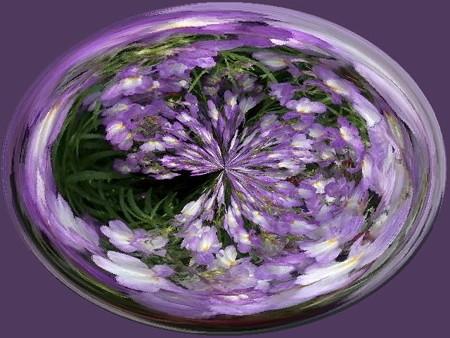 花のしずく03