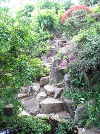 西郷山公園-02滝(水枯れ)