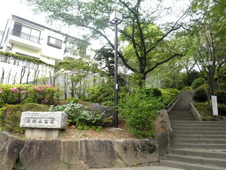西郷山公園-01