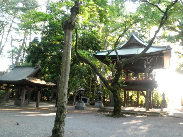 Photos: 泉龍禅寺(狛江)-05手水舎・鐘楼門