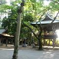 泉龍禅寺(狛江)-05手水舎・鐘楼門