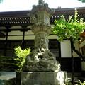 Photos: 泉龍禅寺(狛江)-06本堂d