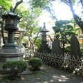Photos: 泉龍禅寺(狛江)-06本堂b-2紫陽花
