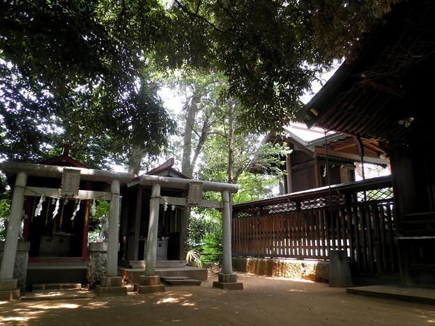 Photos: 糟嶺神社(入間町)-04境内社&本殿