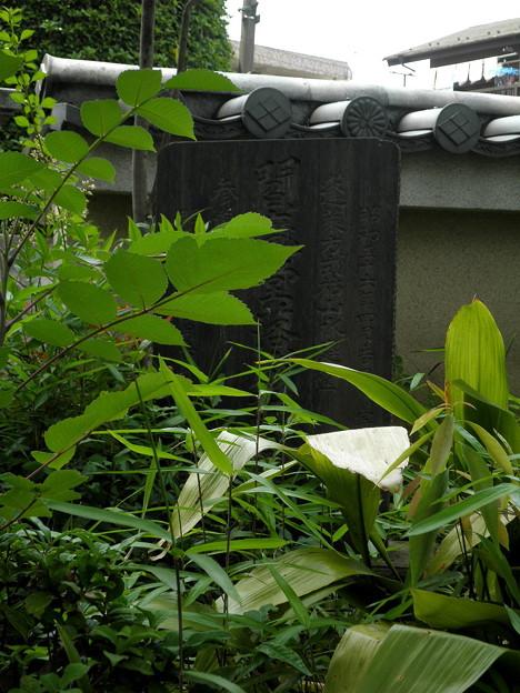 明照院(入間町)-08閻魔堂の石碑