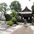 明照院(入間町)-06閻魔堂(十王堂)a_南無水子地蔵菩薩像(左)