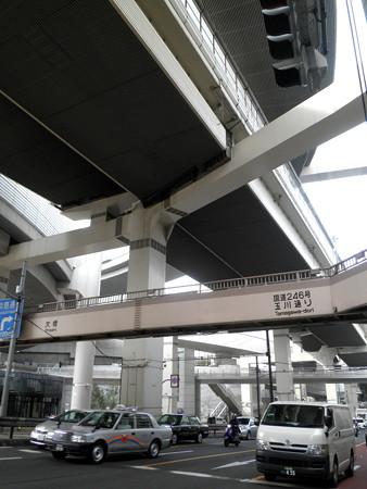上目黒氷川神社-10大橋ジャンクション