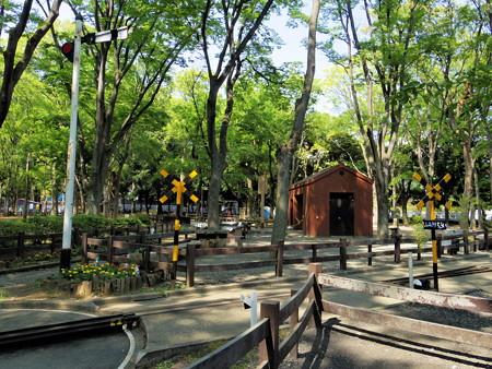 世田谷公園-06