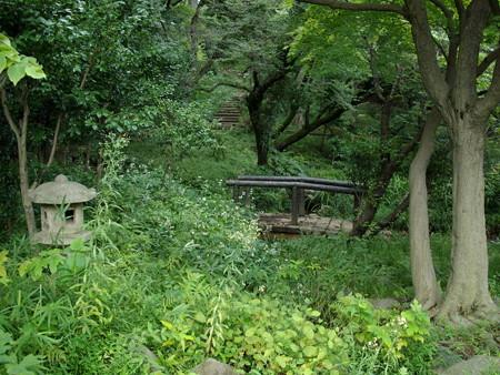 宝来公園-10