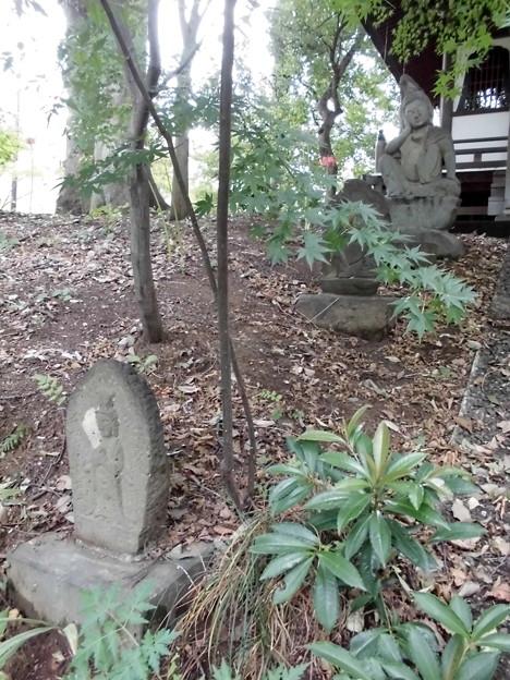 九品仏-17観音堂d仏石像