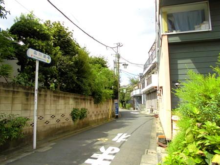 道すがら(狛江駅の南側)-01品川道