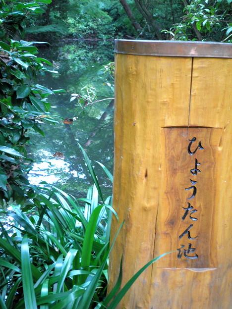 国立自然教育園(晩秋)-09