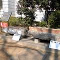 Photos: 都電荒川線_王子駅前駅界隈:旧渋沢家飛鳥山邸-11露台下より出土した「まぐさ」(左)と露台基礎-01