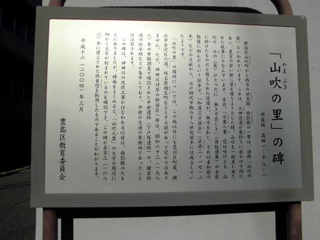 都電荒川線_面影橋駅界隈:山吹の里-INFO