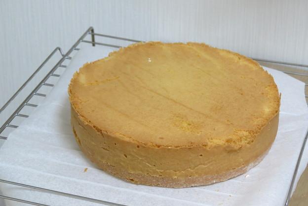 ケーキ スポンジ