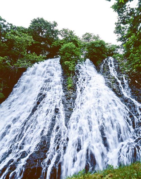 オシンコシンの滝1