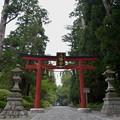 写真: 大崎八幡宮・三之鳥居