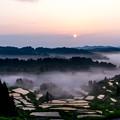 写真: 棚田の朝