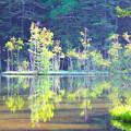神の住む池