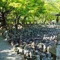 化野念仏寺10