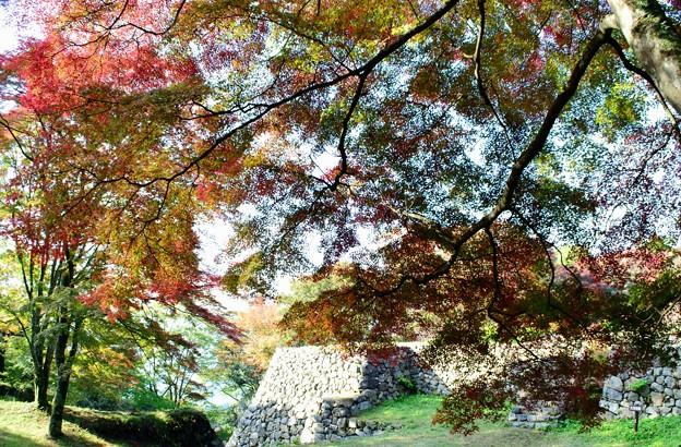 Photos: 高取城跡紅葉11