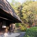 Photos: 大和民族公園紅葉15