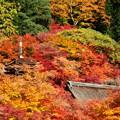 Photos: 談山神社紅葉14