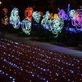Photos: 大阪光の饗宴18