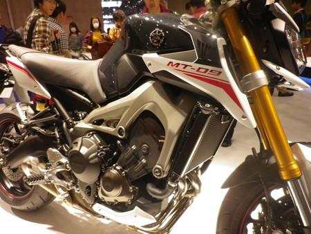 IMGP1273