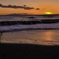 写真: 残照の浜辺