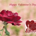 写真: Valentine2