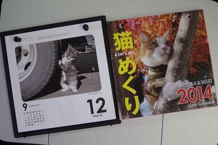 来年の『猫めくり』