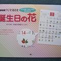 誕生日の花カレンダー