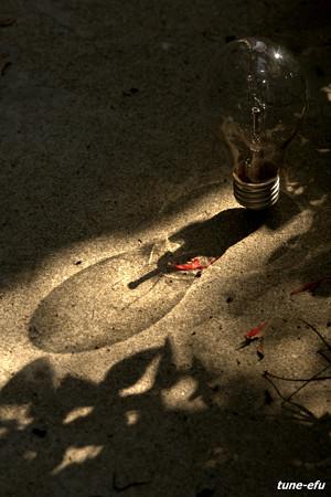 第74回モノコン~透明な影~