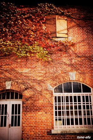 季節は秋#1