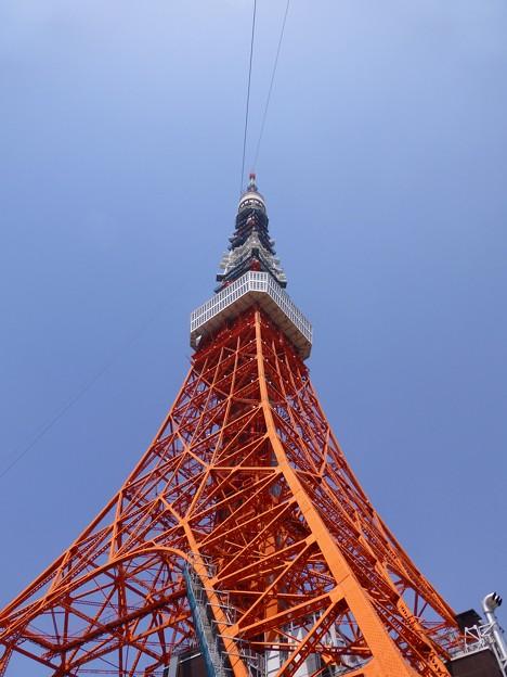 見上げる尖塔