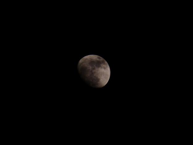 月はまだまだ遠く