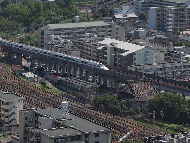 ソラカラ京都#4