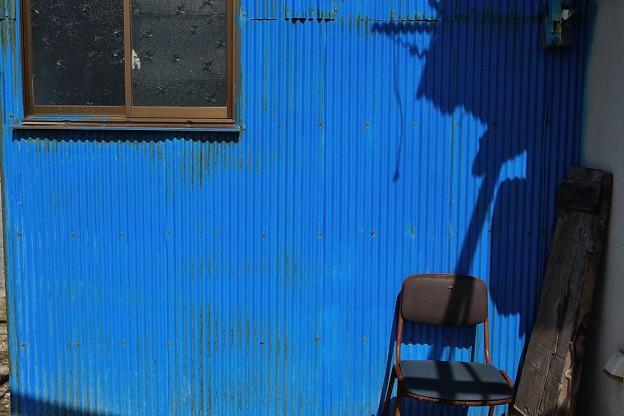 鮮やかな青