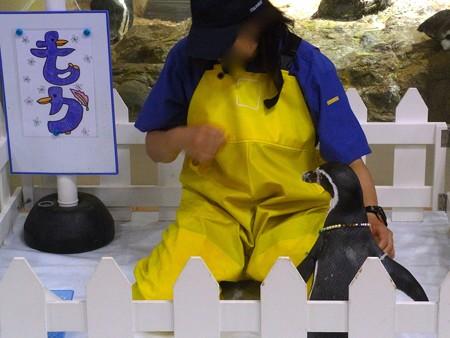 20120815 宮島 ふれあいタイム04