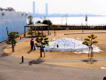 20130120 名古屋港 雪山ジェンツー44