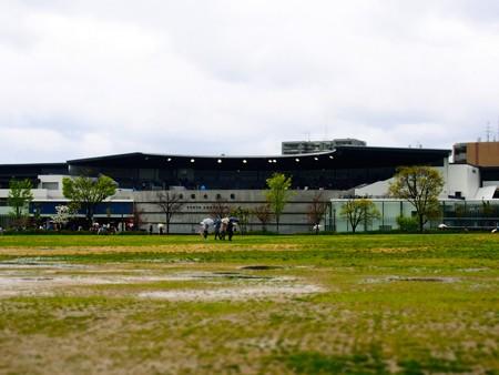 20130406 京都水 京都水族館