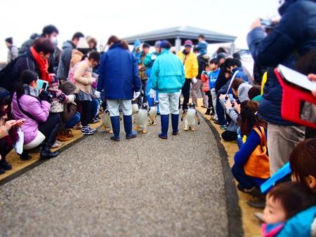 20131228 名古屋港 ジェンツーウォーク02