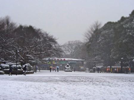 20130208 上野 雪の上野