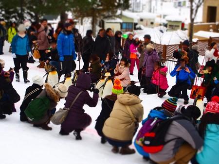20140124 旭山 ペンギンの散歩05