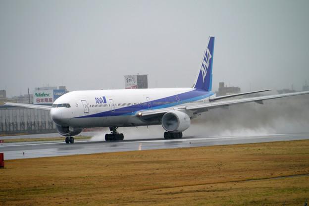 写真: Standing Take-off